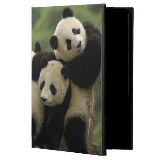 Giant panda babies Ailuropoda melanoleuca) 4 iPad Air Covers