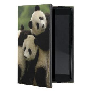 Giant panda babies Ailuropoda melanoleuca) 4 Case For iPad Mini
