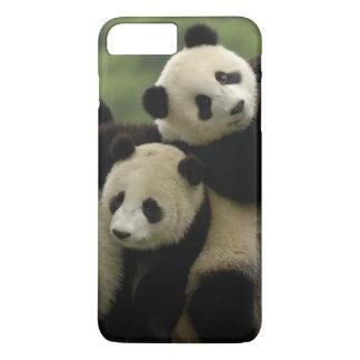 Giant panda babies Ailuropoda melanoleuca) 4 iPhone 8 Plus/7 Plus Case