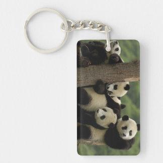 Giant panda babies Ailuropoda melanoleuca) 4 Double-Sided Rectangular Acrylic Keychain