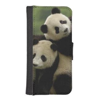 Giant panda babies Ailuropoda melanoleuca) 4 iPhone 5 Wallet Cases