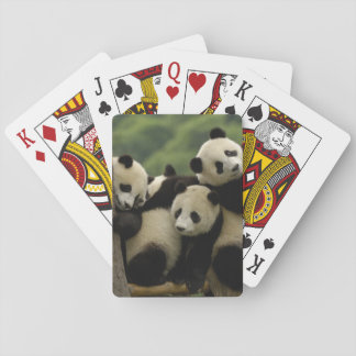 Giant panda babies Ailuropoda melanoleuca) 4 Playing Cards