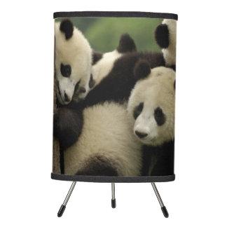 Giant panda babies Ailuropoda melanoleuca) 4 Tripod Lamp
