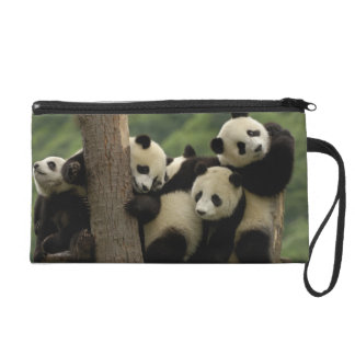 Giant panda babies Ailuropoda melanoleuca) 4 Wristlet Purse