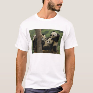 Giant panda babies Ailuropoda melanoleuca) 5 T-Shirt