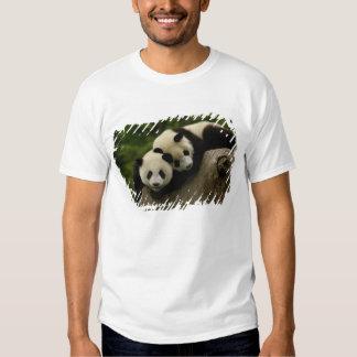 Giant panda babies Ailuropoda melanoleuca) 6 Tshirt