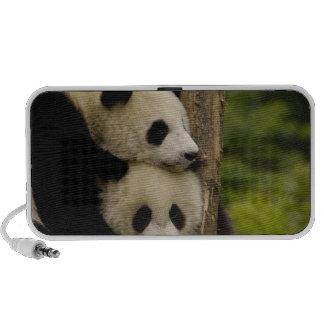 Giant panda babies Ailuropoda melanoleuca) 7 Portable Speaker