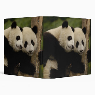 Giant panda babies Ailuropoda melanoleuca) 8 Vinyl Binders