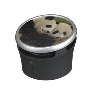 Giant panda babies Ailuropoda melanoleuca) 8 Bluetooth Speaker