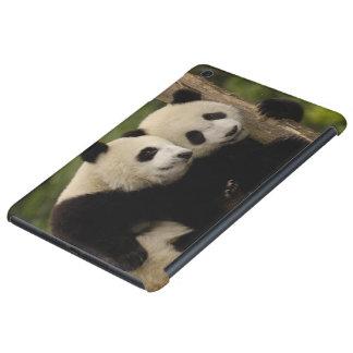 Giant panda babies Ailuropoda melanoleuca) 8 iPad Mini Cases