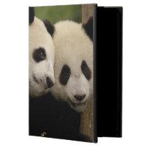 Giant panda babies Ailuropoda melanoleuca) 8 Cover For iPad Air