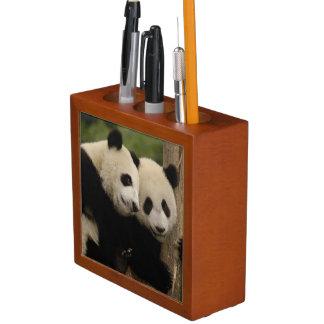 Giant panda babies Ailuropoda melanoleuca) 8 Desk Organizer