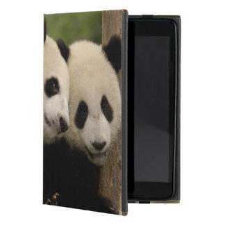Giant panda babies Ailuropoda melanoleuca) 8 iPad Mini Covers