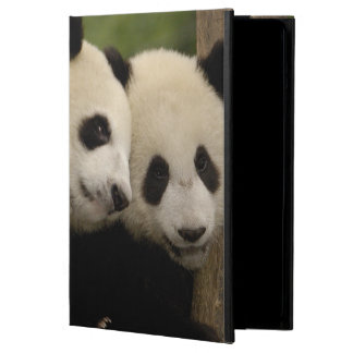 Giant panda babies Ailuropoda melanoleuca) 8 Case For iPad Air