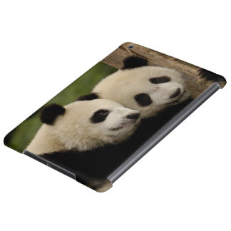 Giant panda babies Ailuropoda melanoleuca) 8 iPad Air Covers