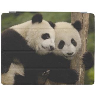 Giant panda babies Ailuropoda melanoleuca) 8 iPad Smart Cover