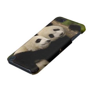 Giant panda babies Ailuropoda melanoleuca) 8 iPod Touch 5G Cover