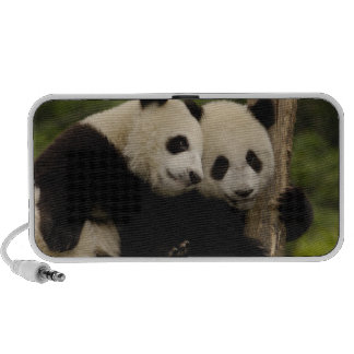 Giant panda babies Ailuropoda melanoleuca) 8 Portable Speaker