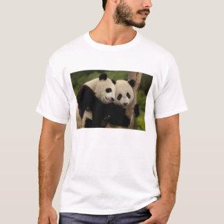 Giant panda babies Ailuropoda melanoleuca) 8 T-Shirt