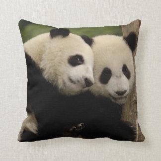 Giant panda babies Ailuropoda melanoleuca) 8 Throw Pillow