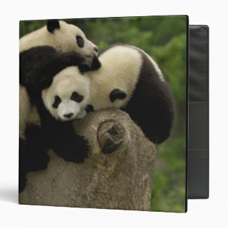 Giant panda babies Ailuropoda melanoleuca) 9 Vinyl Binder