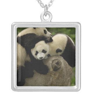 Giant panda babies Ailuropoda melanoleuca) 9 Square Pendant Necklace