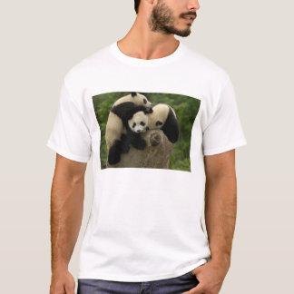 Giant panda babies Ailuropoda melanoleuca) 9 T-Shirt