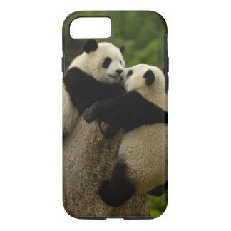 Giant panda babies (Ailuropoda melanoleuca) iPhone 8/7 Case