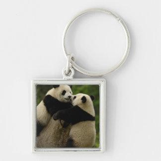 Giant panda babies (Ailuropoda melanoleuca) Silver-Colored Square Keychain