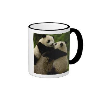 Giant panda babies (Ailuropoda melanoleuca) Coffee Mug