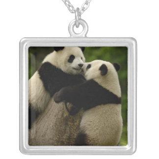 Giant panda babies (Ailuropoda melanoleuca) Square Pendant Necklace