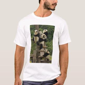 Giant panda babies Ailuropoda melanoleuca) T-Shirt