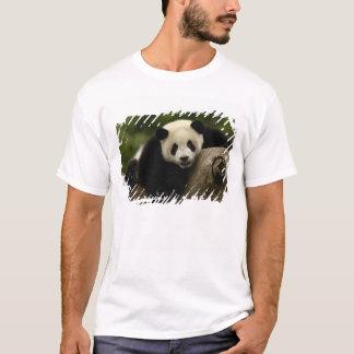 Giant panda baby Ailuropoda melanoleuca) 10 T-Shirt