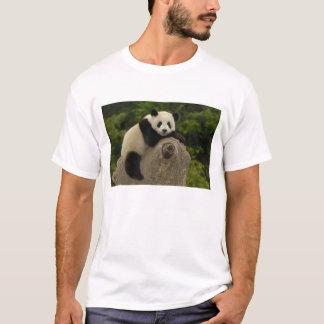 Giant panda baby Ailuropoda melanoleuca) 11 T-Shirt