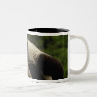 Giant panda baby Ailuropoda melanoleuca) 13 Mug