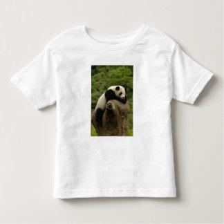 Giant panda baby Ailuropoda melanoleuca) 2 Toddler T-shirt