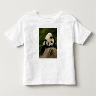 Giant panda baby (Ailuropoda melanoleuca) 2 Toddler T-shirt
