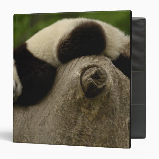 Giant panda baby Ailuropoda melanoleuca) 3 Vinyl Binders