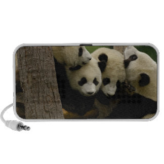 Giant panda baby Ailuropoda melanoleuca) 4 Portable Speaker