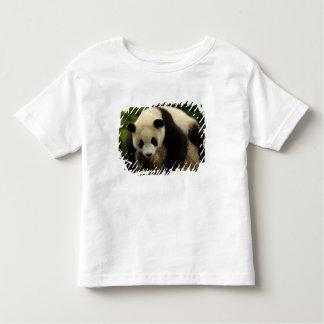 Giant panda baby (Ailuropoda melanoleuca) 4 Toddler T-shirt