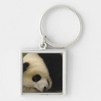 Giant panda baby Ailuropoda melanoleuca) 5 Silver-Colored Square Keychain