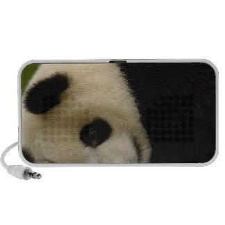 Giant panda baby Ailuropoda melanoleuca) 5 Mini Speakers