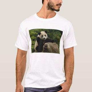 Giant panda baby Ailuropoda melanoleuca) 6 T-Shirt