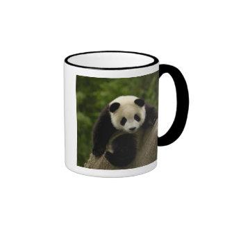 Giant panda baby Ailuropoda melanoleuca) 9 Coffee Mug