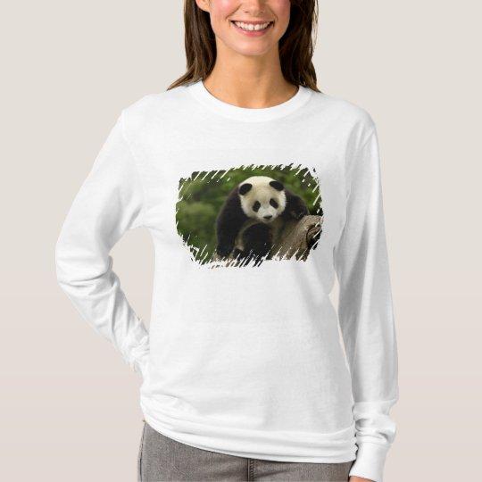 Giant panda baby Ailuropoda melanoleuca) 9 T-Shirt