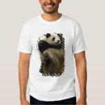 Giant panda baby (Ailuropoda melanoleuca) Tshirts