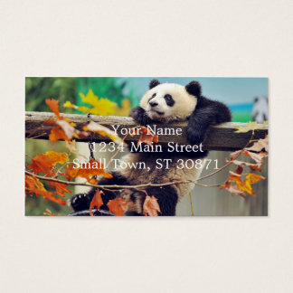Giant panda baby over the tree business card