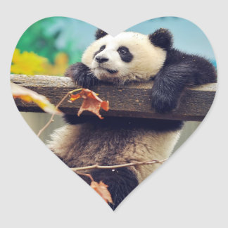 Giant panda baby over the tree heart sticker