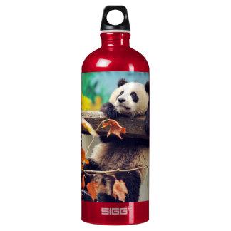 Giant panda baby over the tree water bottle