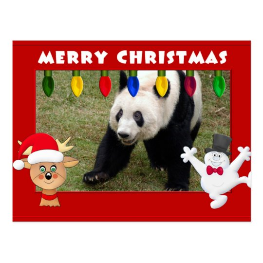 Giant Panda Bear & Baby Panda Christmas Card
